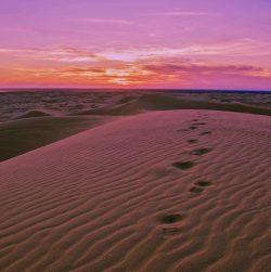 5 Easy Ways To Follow God